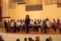 styginiu_instrumentu_orkestras